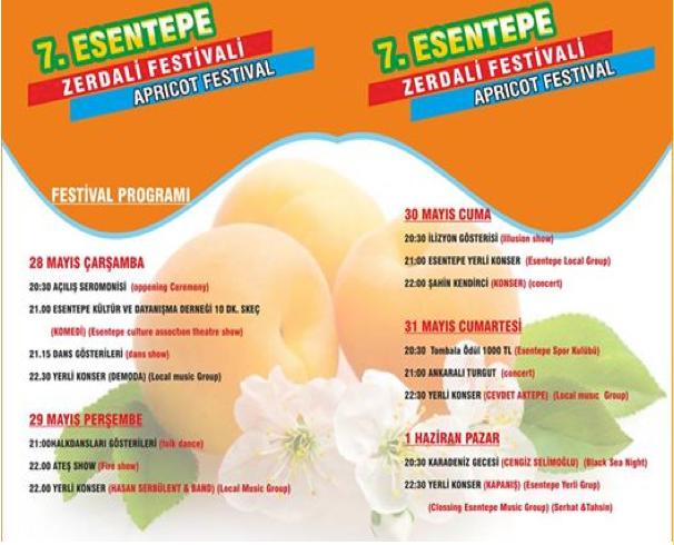 Aprikos_festival_esentepe_norra_cypern