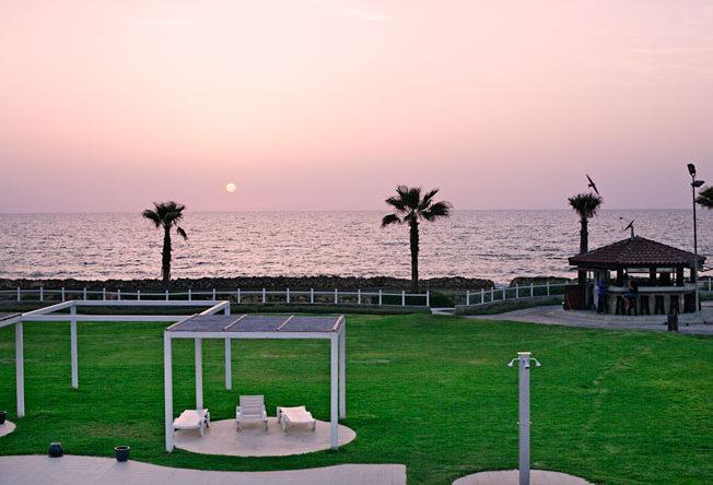 Dagens_bild_norra_Cypern_north_cyprus_picture_palmtrees