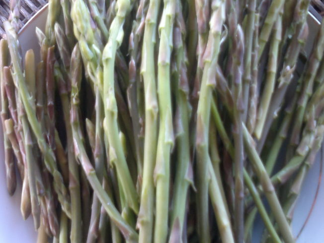 north-cyprus-asparagus-recipe-freshly-picked