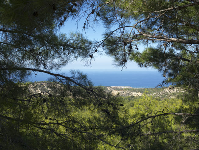 north-cyprus-2015-Besparmak-mountain-nature0005