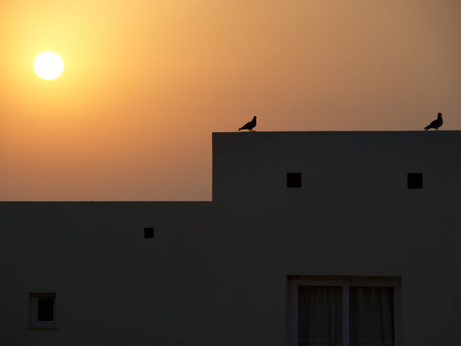 PET_north-cyprus-2015-archieves-summer-sunset0017