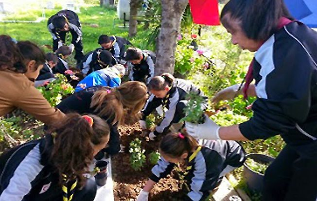 sos-children-planting-trees-north-cyprus