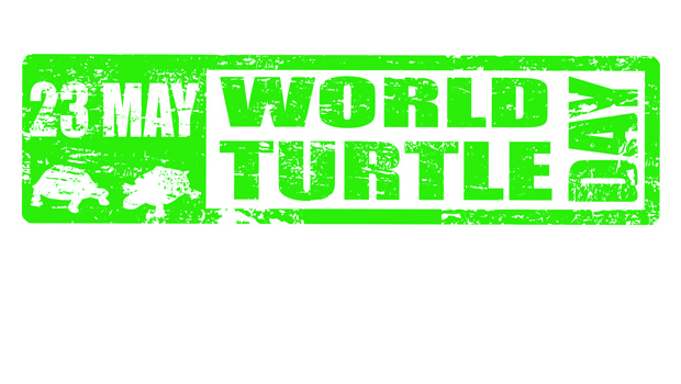 World-Turtle-Day-North-Cyprus