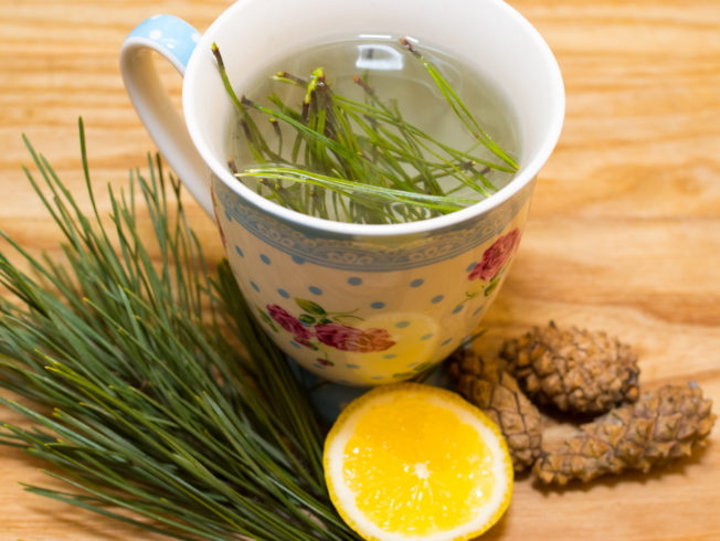 north-cyprus-Pine-Needle-Tea