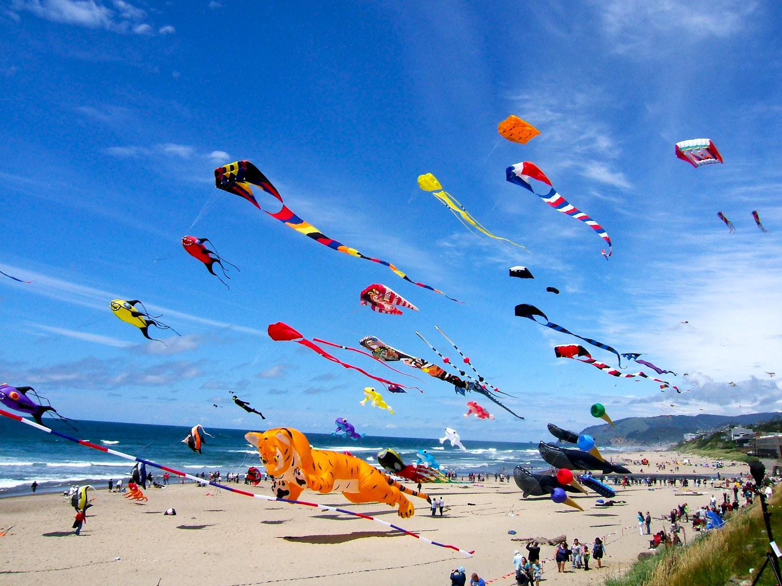 Wind World Kites Long Beach