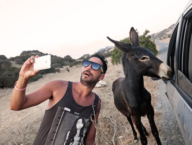 north-cyprus-karpaz-donkey-car