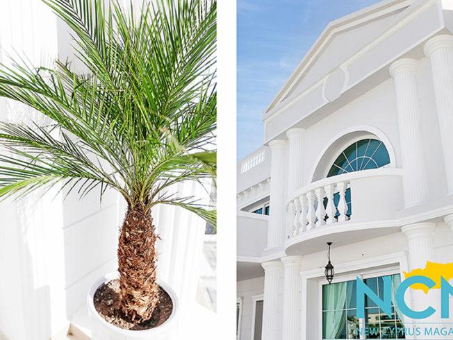 catalkoy-white-villa-palm-tree