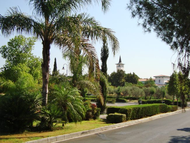 The University of Cyprus