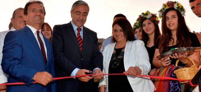Opening of Artichoke Festival