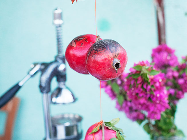 pomegranates juicer flowers
