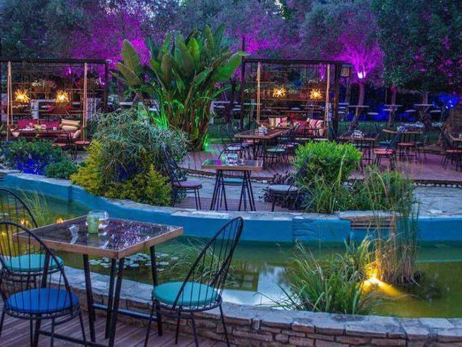Garden Day & Night, Nicosia