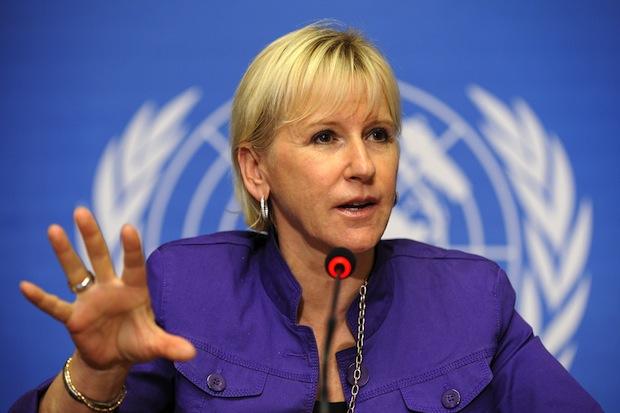 Swedish FM: Reunification efforts should continue