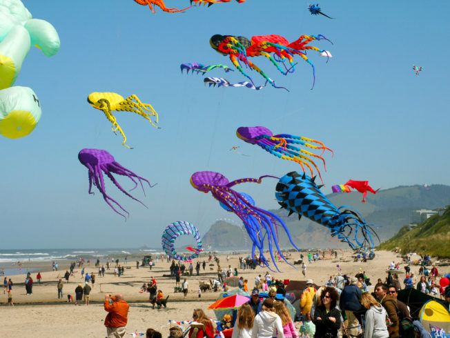 Kids' fun continues kite festival